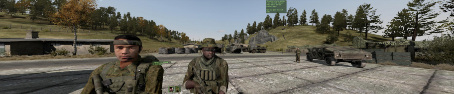 Armed Assault 2 (ARMA 2)