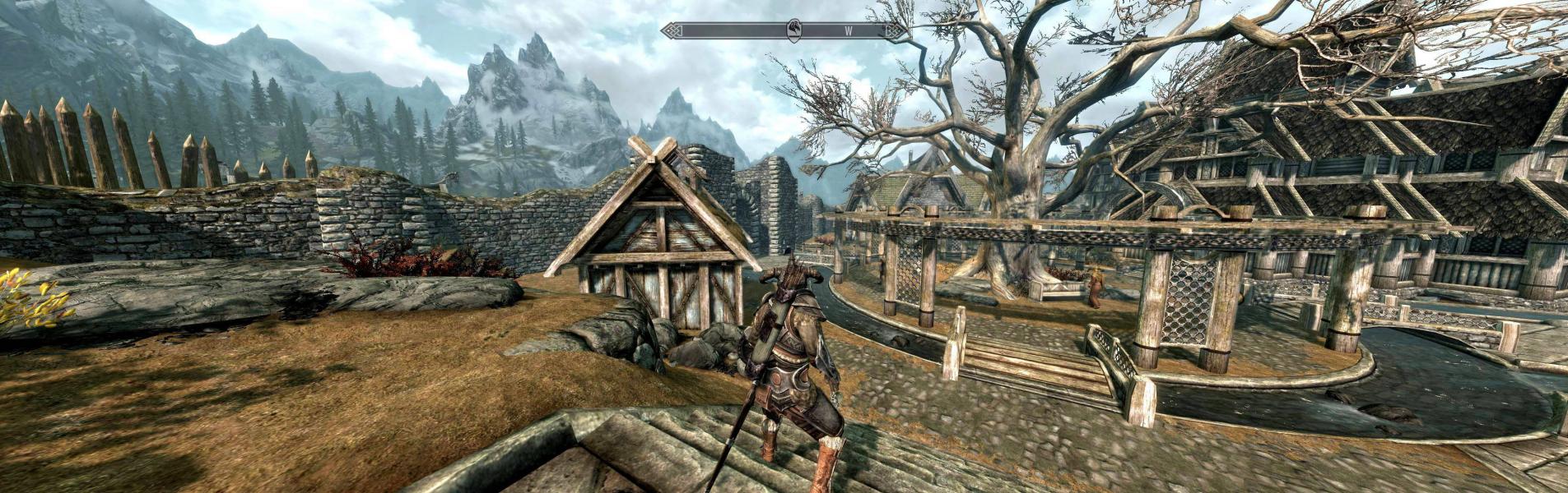 The Elder Scrolls V: Skyrim | WSGF