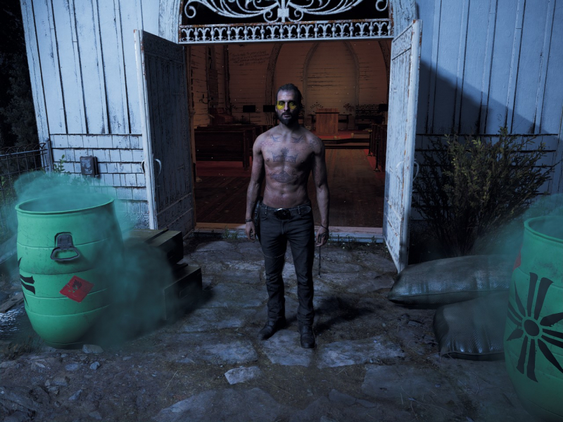 Far Cry 5 | WSGF